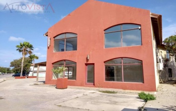 Dominicanessestraat 33, ,Commercial,For Sale,Dominicanessestraat,1040
